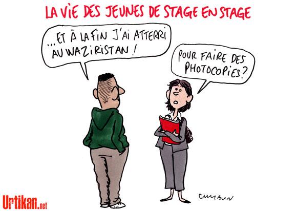 Les jeunes Français et la vie active