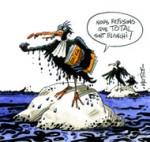 Naufrage de l'Erika: La procédure bientôt annulée, Total blanchi?