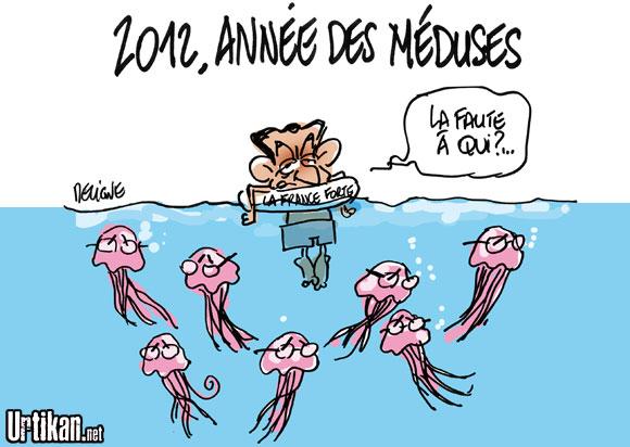 La nouvelle météo des méduses