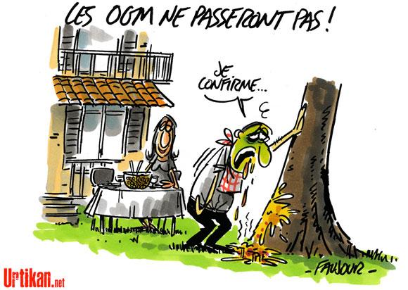 La France défendra l'interdiction des OGM si le risque est vérifié