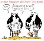 OGM : comment être sûr de ne pas en manger ?