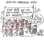 Mariage Gay : le couple Copé-Fillon, c'est pas pour tout de suite !