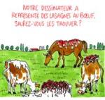 Viande de cheval : le scandale sanitaire s'étend