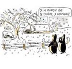 Neige : 16 villages coupés du monde en Normandie