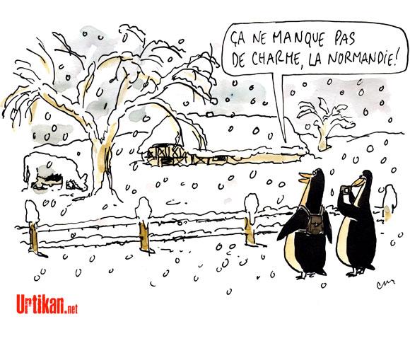 Neige : 16 villages coupés du monde en Normandie - Dessin de Cambon