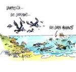 Lampedusa : plus de 300 corps retrouvés après le naufrage - Dessin du jour de Mutio