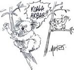 Le réchauffement menacerait le koala d'extinction - Dessin du jour de Mutio