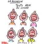 """Prélèvements d'ADN à La Rochelle : """"Le violeur est peut-être dans le lycée"""" - Dessin de Chimulus"""