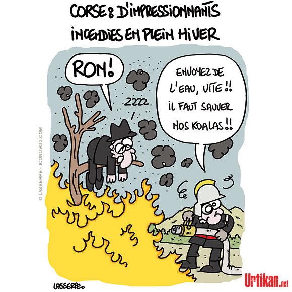 Incendies en Corse - Dessin de Lasserpe