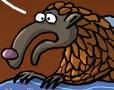 Les pangolins sont bien porteurs de souches de coronavirus - Dessin de Chereau