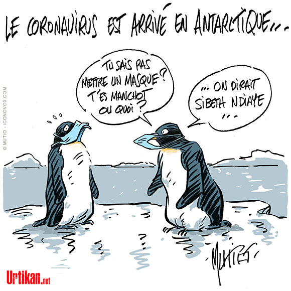 Covid-19 : n'épargne plus l'Antarctique - Dessin de Mutio
