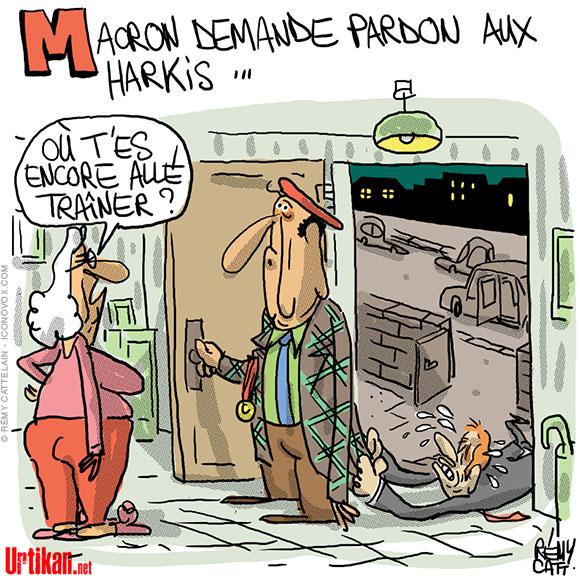 Macron présente ses excuses aux harkis - Dessin de Rémy Cattelain